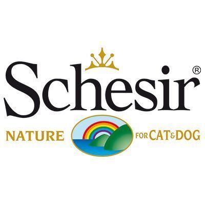 Schesir Perro