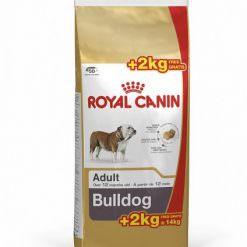 royal-canin-bulldog-ingles-12+2kg