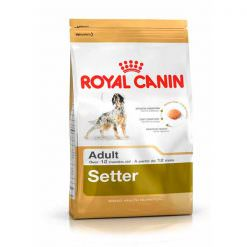 royal-canin-setter-adult-breed-health-nutrition