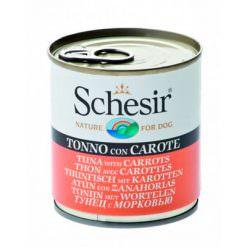 schesir-lata
