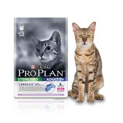 proplanesterilizado7