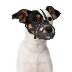 Bozal de goma para perros