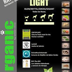 Light-Ok-copia